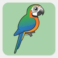 Harlequin Macaw Square Sticker