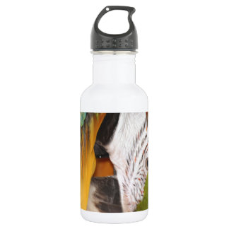 Harlequin macaw stainless steel water bottle
