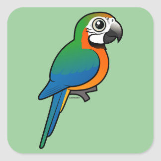 Harlequin Macaw Stickers