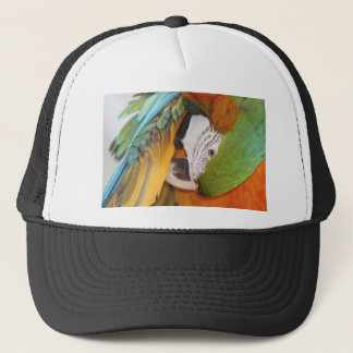 Harlequin macaw trucker hat