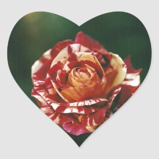 Harlequin Rose Heart Sticker