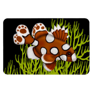 Harlequin Sweetlips Reef Fish Premium Flexi Magnet