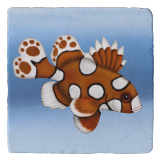 Harlequin Sweetlips Reef Fish Stone Trivet