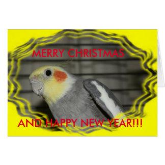 Harley Cockatiel Christmas CARD