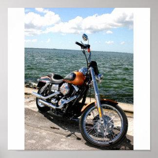 Harley Pics 040 Poster