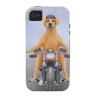 Harley que monta Labrador Case-Mate iPhone 4 Funda