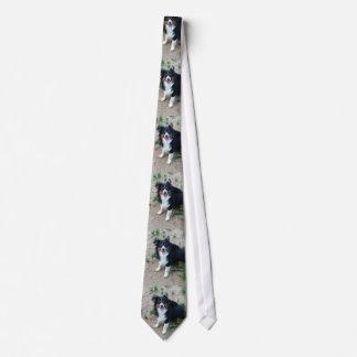 Harley Tie