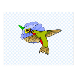Harmon Hummingbird Postcard