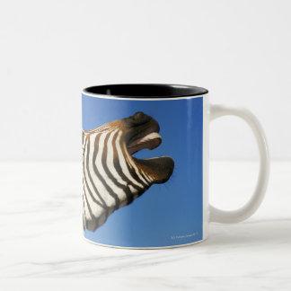 Harnas Wildlife Sanctuary, Namibia, Southern Two-Tone Coffee Mug