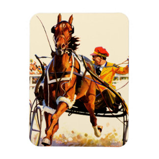 Harness Race Magnet