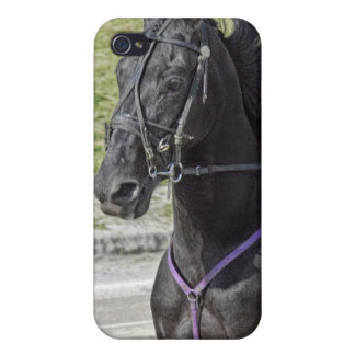 Harness Racing 4  iPhone 4 Case