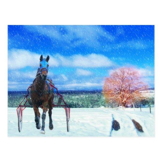 Harness Racing Horse Holiday Card