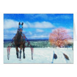 Harness Racing Horse Holiday Card