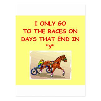 harness racing postcard