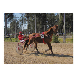 Harness racing Print