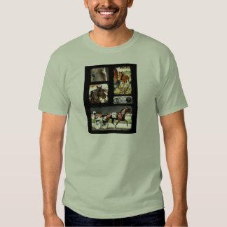 Harness Racing Sport T Shirt