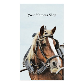 Harnessed horse with collar business card