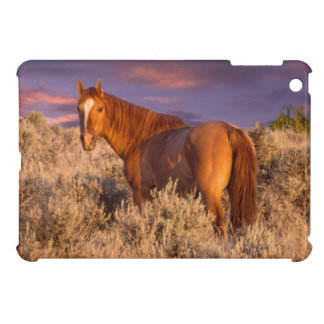 Harney County Wild horse stands alert Case For The iPad Mini