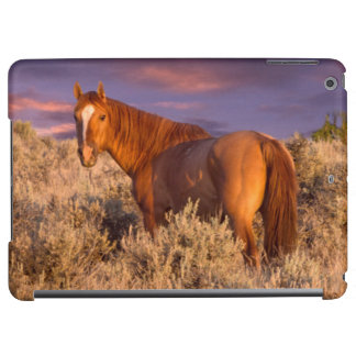 Harney County Wild horse stands alert iPad Air Cover