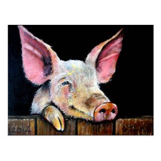 Harold (cerdo de Steptoe) Tarjetas Postales