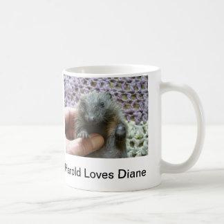 Harold Loves Diane Mug