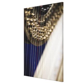 Harp Canvas Print