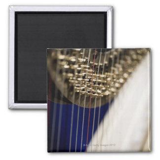 Harp Magnet