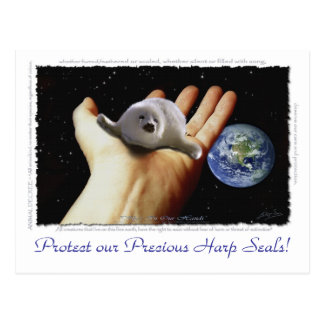 HARP SEAL Earth Day Postcards