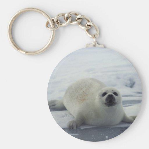 Harp Seal on Ice Basic Round Button Keychain