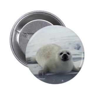 Harp Seal on Ice Button