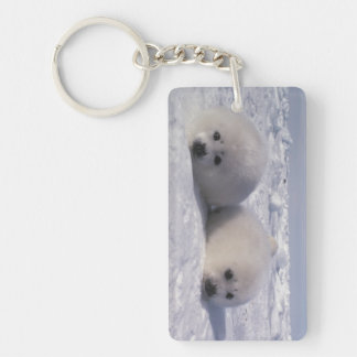 Harp seal (Phoca groenlandica) Harp seal pups Acrylic Key Chain