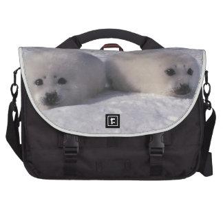 Harp seal (Phoca groenlandica) Harp seal pups Commuter Bags