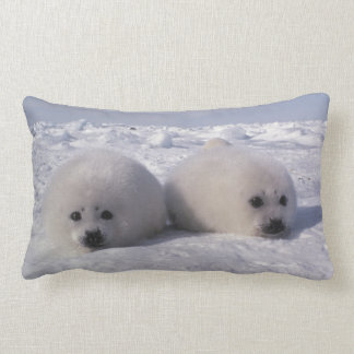 Harp seal (Phoca groenlandica) Harp seal pups Throw Pillow