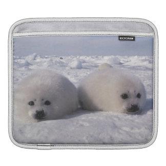 Harp seal (Phoca groenlandica) Harp seal pups Sleeve For iPads
