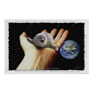 HARP SEAL Protection Earth Day Art Poster