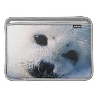 Harp seal pup 2 sleeves for MacBook air