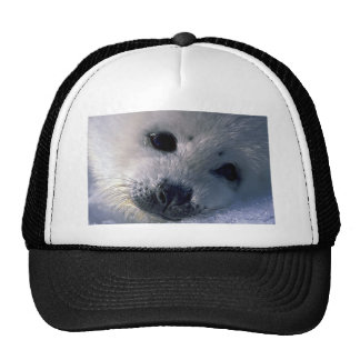 Harp seal pup mesh hat