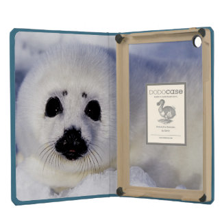 Harp seal pup ice Gulf of St. Lawrence, iPad Mini Retina Cases
