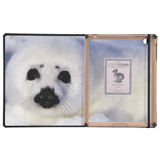 Harp seal pup ice Gulf of St. Lawrence, iPad Folio Case