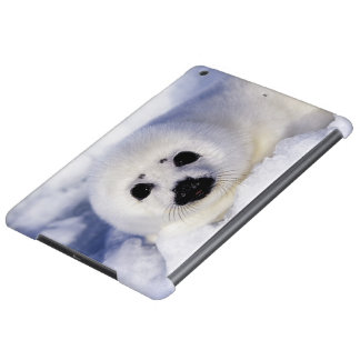 Harp seal pup ice Gulf of St. Lawrence, iPad Air Cover
