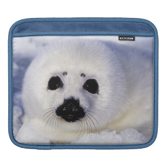 Harp seal pup ice Gulf of St. Lawrence, Sleeve For iPads