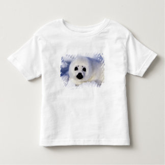 Harp seal pup ice Gulf of St. Lawrence, Toddler T-shirt