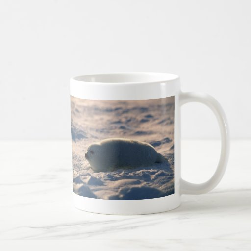 Harp Seal Pup in Snow Classic White Coffee Mug