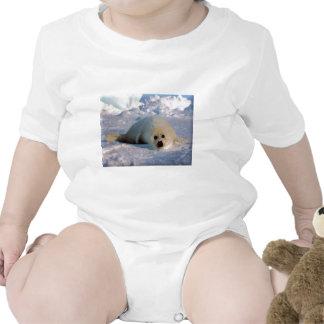 Harp Seal Pup Tshirts