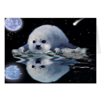 HARP SEAL & Story Wildlife Art Greeting Card