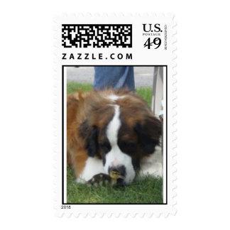 harper&howie postage stamp