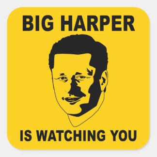 Harper grande le está mirando pegatina