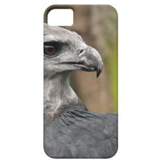 Harpy Eagle 1.JPG iPhone SE/5/5s Case