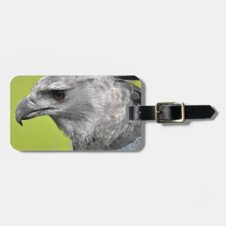 Harpy Eagle 2.JPG Luggage Tag