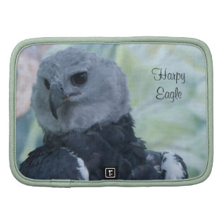 Harpy Eagle Organizadores